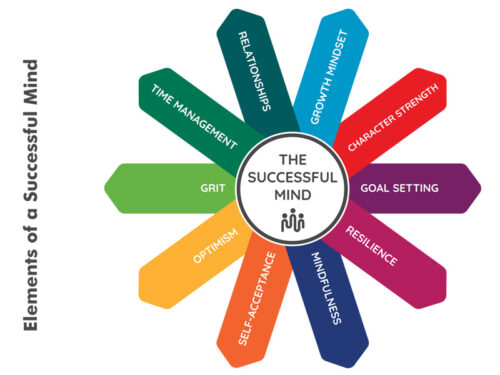 YCDI-The-Successful-Mind-Elements